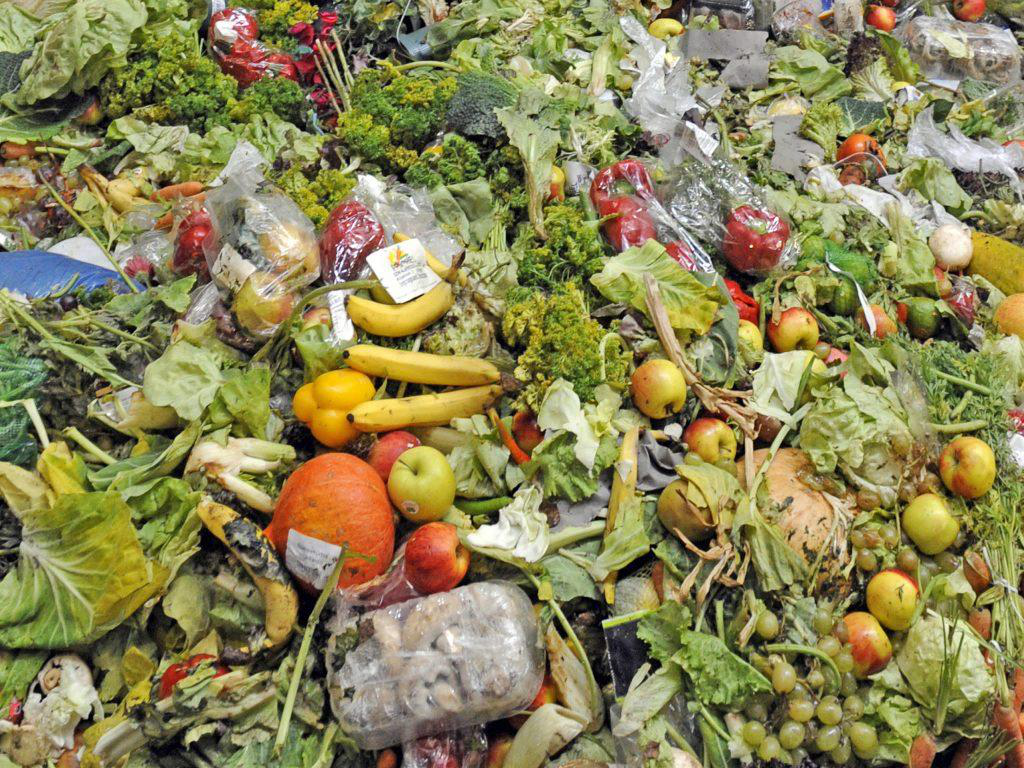 The Loss Rate Of Food Waste Organic Matter Is High, How To Extract Organic Matter With High Efficiency And Proportion?